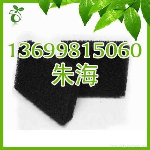 活性炭海棉 2