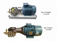 NMT2120高压泵NMT2120HT高温泵5.5KW总成