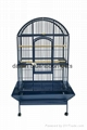 2017 china high quality parrot cage