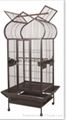 DLBR(B) 2029 Parrot Cage