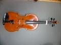 独奏中提琴