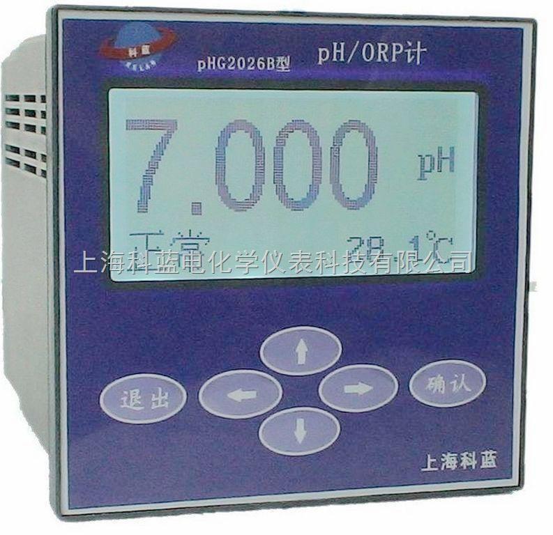 pH/ORP監測儀(精度高) 1