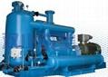2BE3列水环式真空泵及压缩机 2
