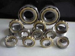 Cylindrical Roller Bearing NJ 215