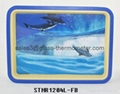 Moving sand art with the picture of fish--STMR1204