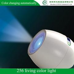 256 Living Color Light