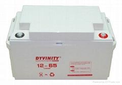 大力王UPS鉛酸蓄電池