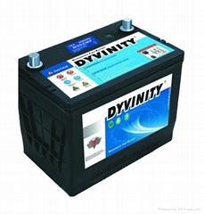 大力王汽車免維護蓄電池