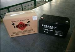 美洲豹UPS鉛酸蓄電池12V-100AH