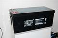 美洲豹UPS电源蓄电池12V-200AH 1