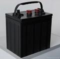 美洲豹觀光車蓄電池3D-180