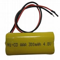应急照明电池组