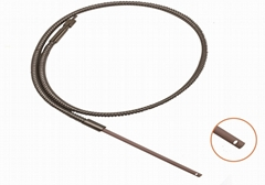 immersion fiber probe