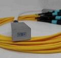 fiber array