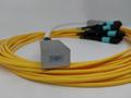 2D fiber array 1