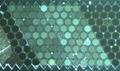 光纤传像束
