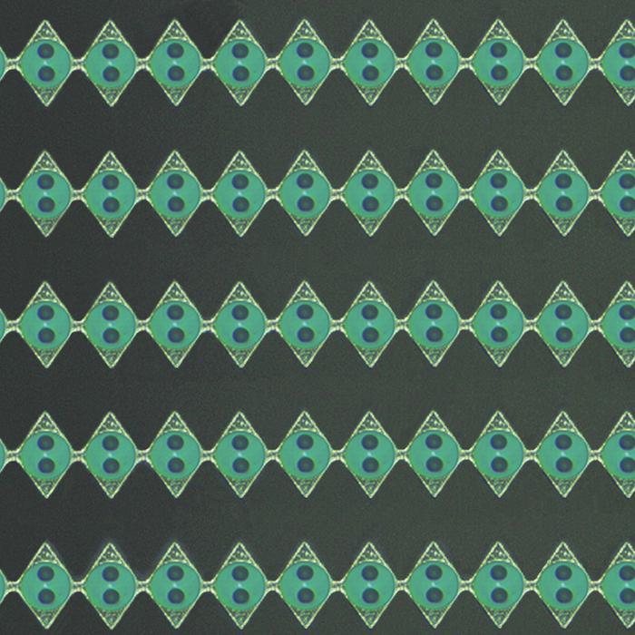 2D保偏光纤阵列 3
