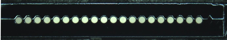 曲面光纖陣列 1