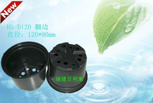 12cm黑色PP塑料花盆 1