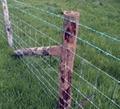 GD field grassland fence 2
