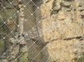 GD field grassland fence 5