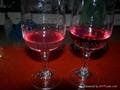 葡萄酒过滤设备