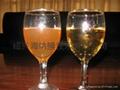 小型黃酒過濾機 5