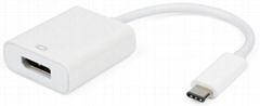 USB 3.1 Type C to Displayport adapter