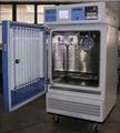药品稳定性试验箱