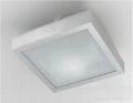 aluminum and acrylic ceiling lamp