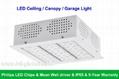 120W LED Ceiling Canopy Light