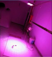 APOLLO-8植物生長燈