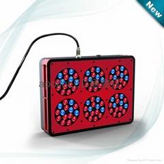 阿波羅-6植物生長燈