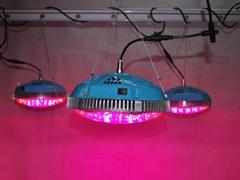 UFO植物燈