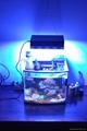 調光遙控水族燈150W
