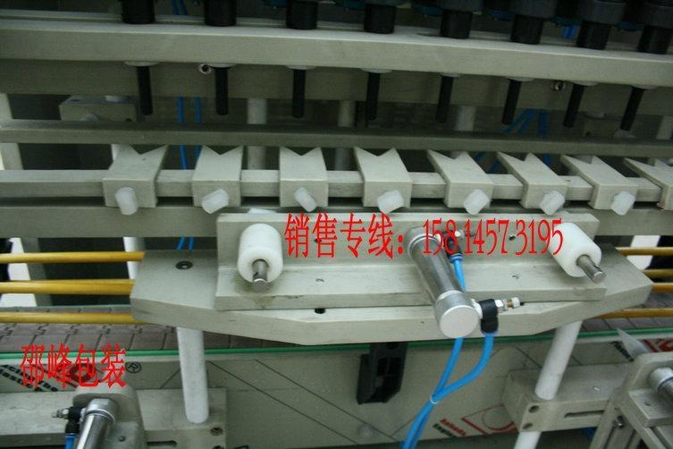 防腐蚀清洁厕液充填灌装机 3