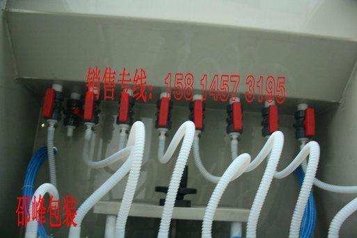防腐蚀清洁厕液充填灌装机 4