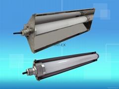 L1601-防爆LED日光管灯