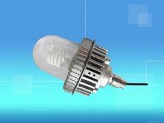 L1605B-防爆LED省電燈泡