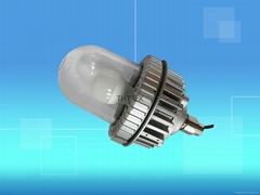 L1605A-防爆LED灯泡