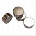 釹鐵硼強力磁鐵 1