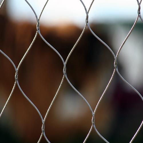 zoo animal cage 1