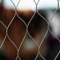 zoo animal cage