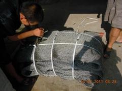 zoo aviary mesh