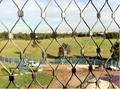 zoo bird netting