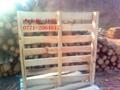 广西木托盘 4