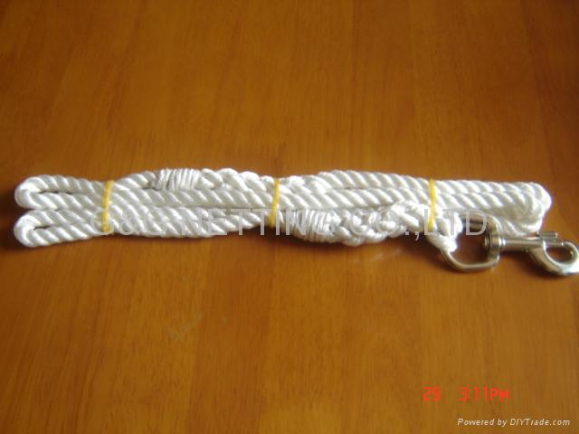Dog Leash 1