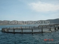 AQUACULTURE CAGE PEN NET AND NETTING 2