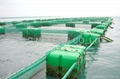 AQUACULTURE CAGE PEN NET AND NETTING 4