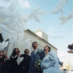 white dove shaped wedding balloons PE Biodegradable Dove balloons for wedding